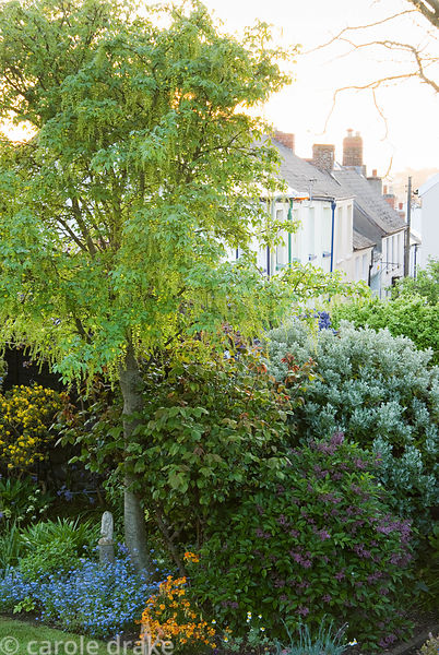 Narrow streets of terraced houses are seen from the viewing platform, built into a corner of the garden. 24 Bude Street, Appl...