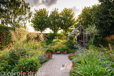 Kitchen garden with olive trees and beds planted with ornamentals including agapanthus, echinaceas and Stiipa gigantea, with ...