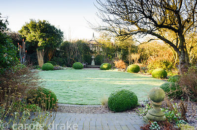 Clipped box spheres edge the circular lawn in the back garden on a frosty morning at Windy Ridge, Little Wenlock, Shropshire, UK
