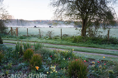 The front garden is edged by a track leading to the river, and fields where horses graze. Terstan, Stockbridge, Hants, UK