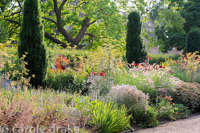 Hot border in the East Garden planted with a mix of herbaceous perennials and grasses including fennel, dahlias, achilleas an...