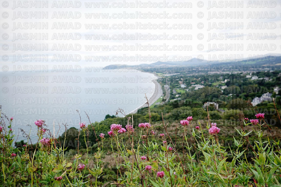 View of Dublin from Killiney Obelisk