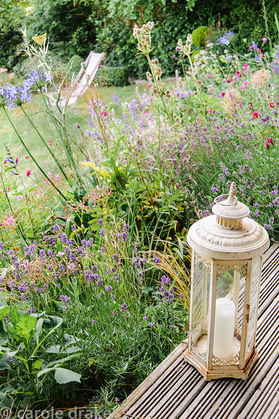 Candle lantern on the decking by the house, with border full of blues, purples and pinks including agapanthus, salvias, scabi...