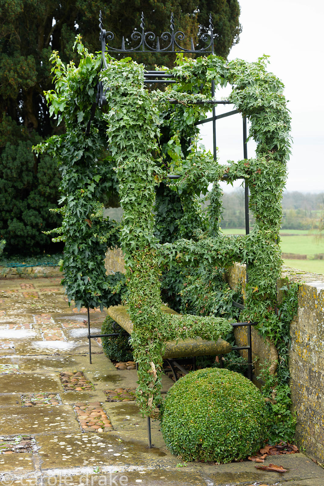 Ivy coated arbour at Bourton House garden in the Cotswolds in January