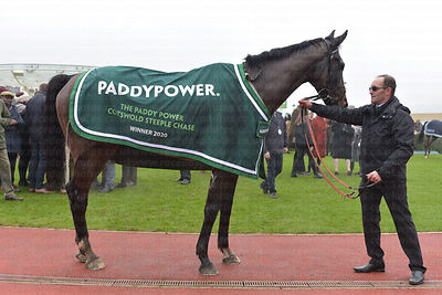Paddy_Power_Rug_Shot_25012020-1-2