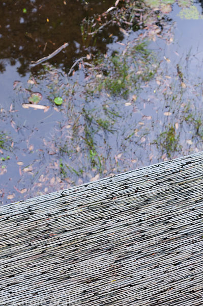 Detail of bonded slate walkway beside a pond. Darren Hawkes' gold medal winning Chelsea garden has been reconfigured to give ...