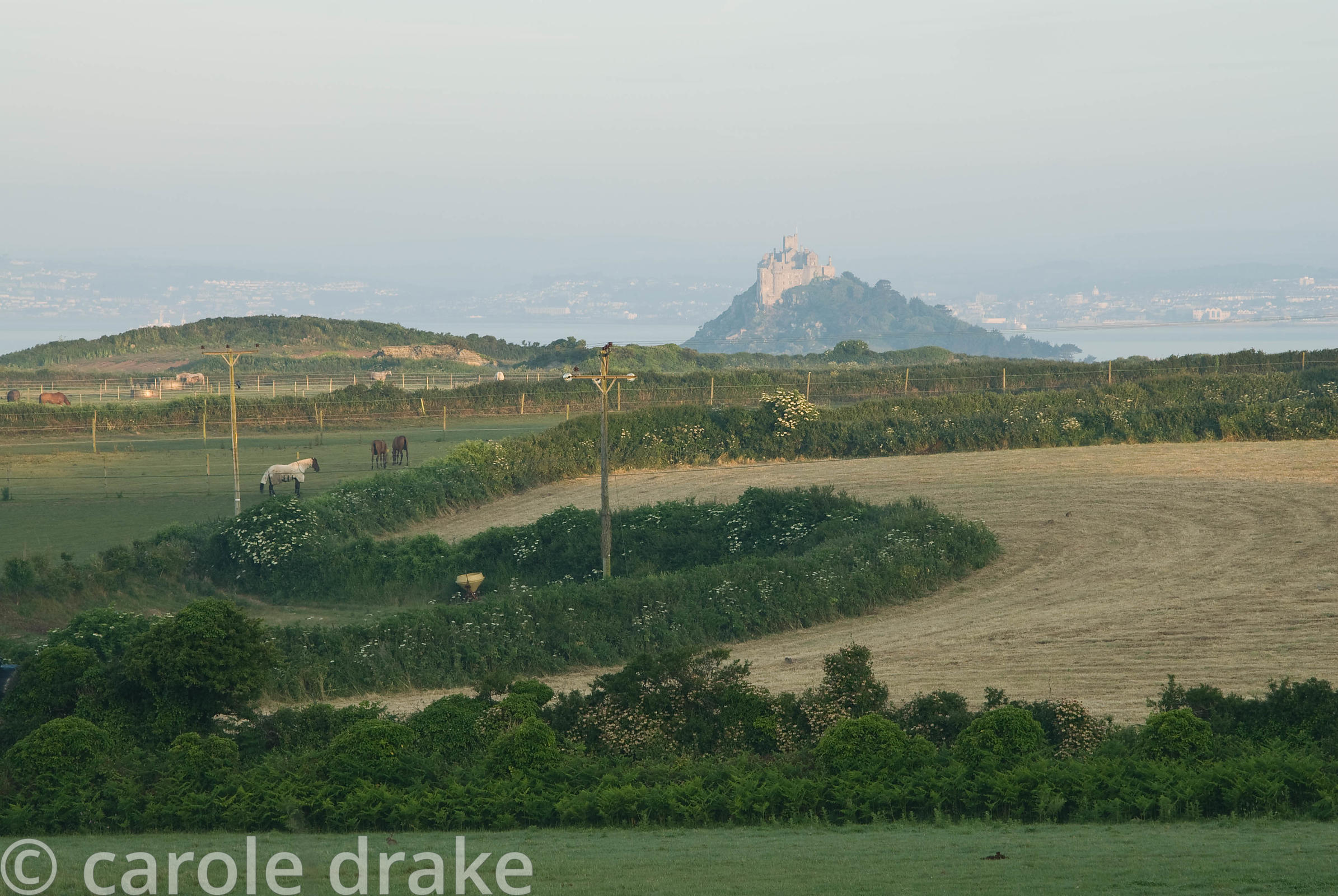 View of St Michael's Mount across the farmland that surrounds the garden. Ednovean Farm, Marazion, Cornwall, UK