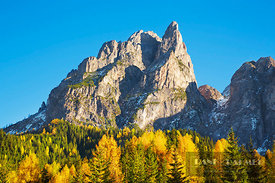 Mountain impression Grosser Rosskopf and larch forest in autumn - Europe, Italy, Trentino-Alto Adige, South Tyrol, Prags Dolo...