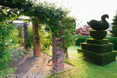Topiary garden features yew clipped into peacocks and swans, here beside pergola draped with roses, honeysuckle and clematis....
