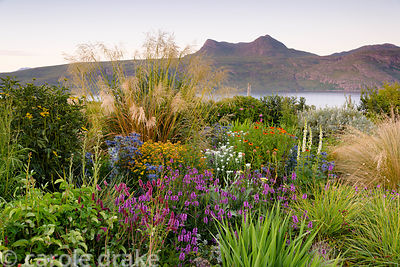 Garden at 2 Durnamuck, Little Loch Broom, Wester Ross in July with mixed border of grasses and herbaceous perennials includin...