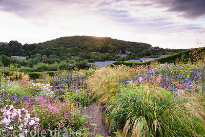Lush mix of herbaceous perennials and grasses including Stipa calamagrostis, phlox, low growing Persicaria amplexicaulis 'Pin...