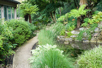 Small pond is surrounded with foliage planting including tree ferns, pennisetum, ferns and hostas. Haddon Lake House, St Lawr...