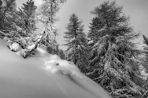 Powder bath with Adrien Coirier