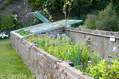Restored cold frames containing plants for sale, propagated from the garden. Littlebredy Walled Gardens, Littlebredy, Dorset