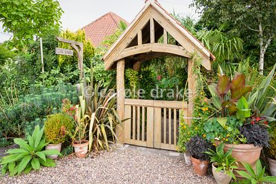 Lychgate style entrance to the garden at Oak Barn, Newark, Notts in September framed by plants including climber Thunbergia a...