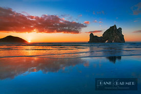 Coast landscape with Archway Islands - Oceania, New Zealand, South Island, Tasman, Golden Bay, Puponga, Wharariki Beach, Arch...