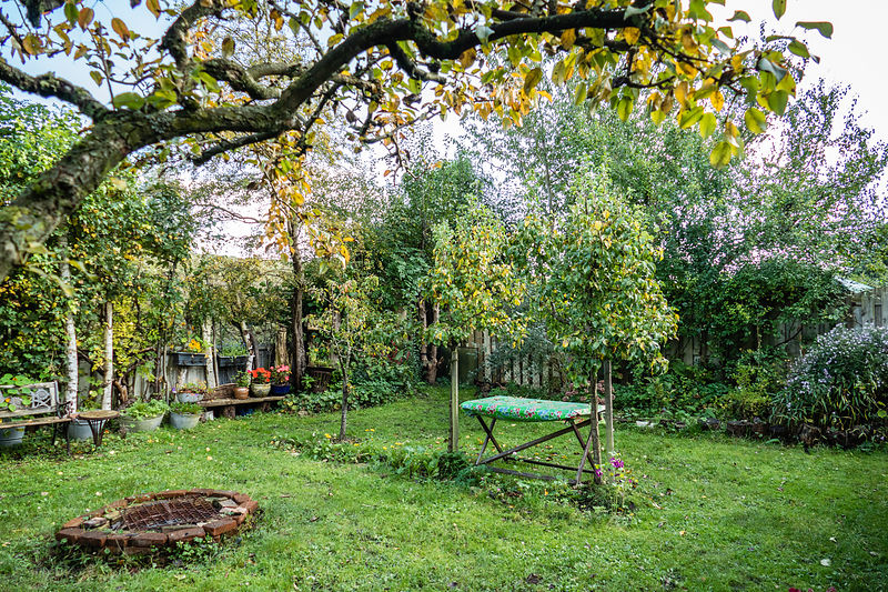 View on autumn garden with firepit and gardentable