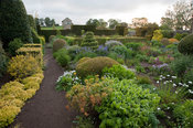 The Flower Garden features strong blocks of box and yew that frame cottage garden plants and flowers, here including euphorbi...