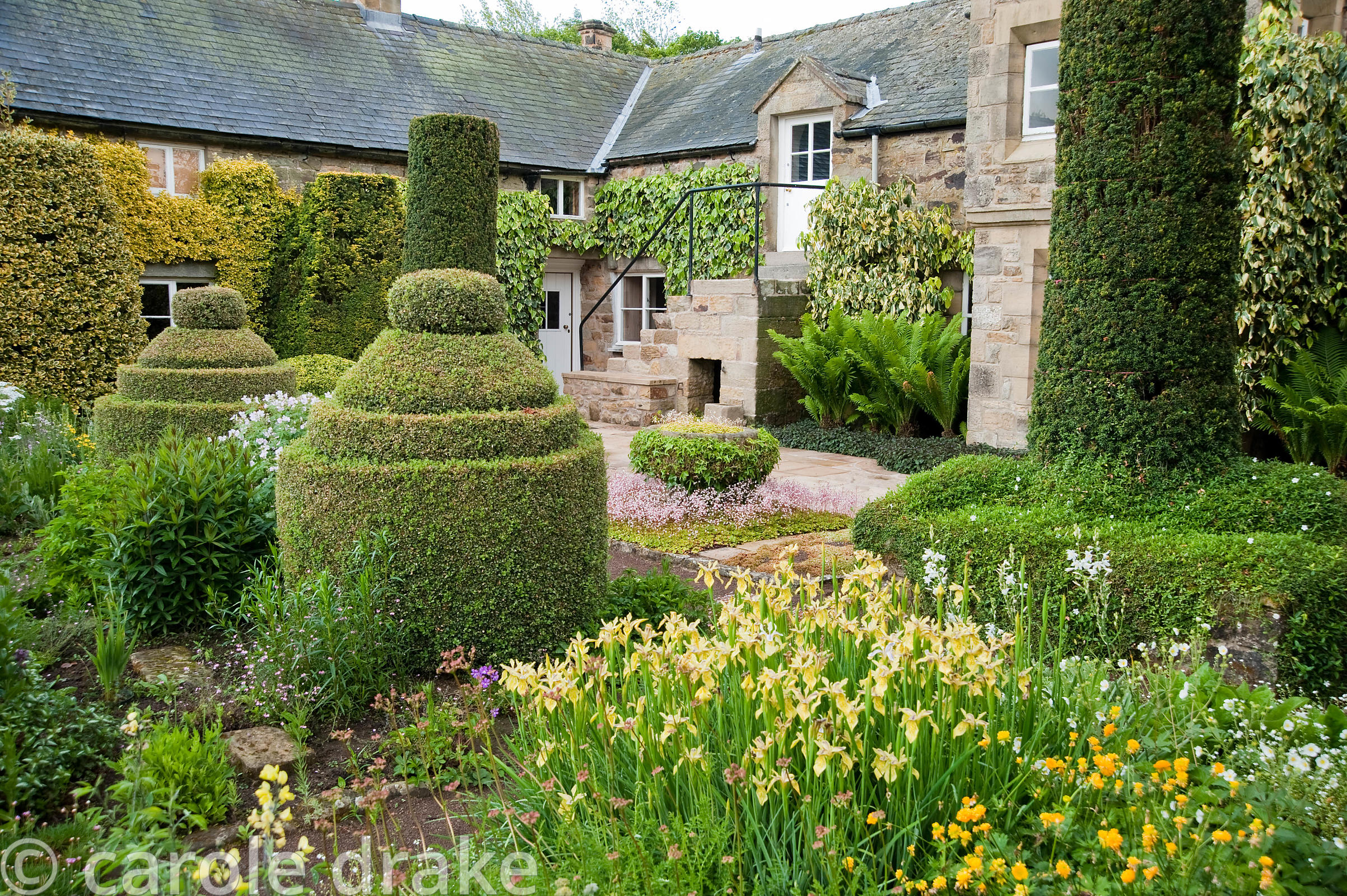 The Flower Garden features strong blocks of box and yew that frame cottage garden plants and flowers, here including Iris for...