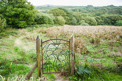 Decorative wrought iron gate marks the entry into Waun Fach, an ancient rush pasture dominated by angelica in late summer and...