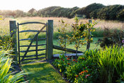 Simple paling gate leading from the vegetable garden into the meadow at Sea View, Cornwall in June