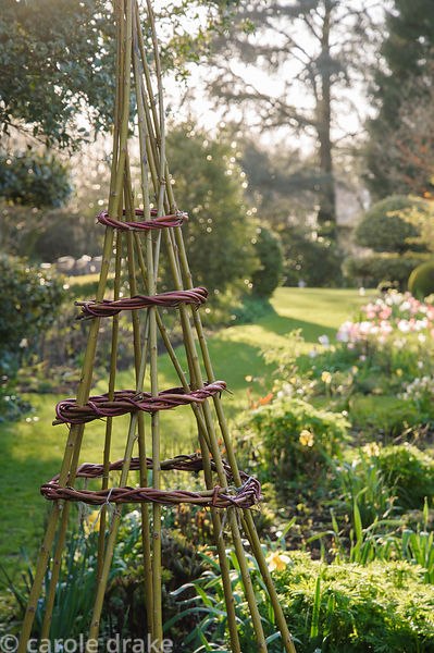 Wigwams made using colourful willow and cornus stems at Barnsley House, Cirencester, Glos, UK