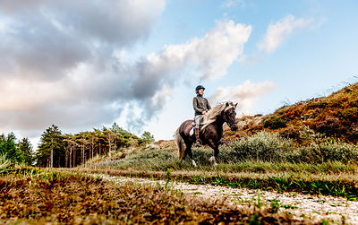 Danish woman riding horse in Thy woods, Denmark 30