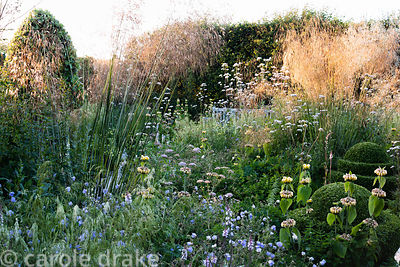 Ornamental garden, planted with Stipa gigantea, Valeriana officinalis, geraniums, Pimpinella major 'Rosea', Deschampsia caesp...