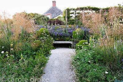 Wooden bench framed by clipped box, Nepeta 'Six Hills Giant' and a border brimming with grasses and herbaceous perennials inc...