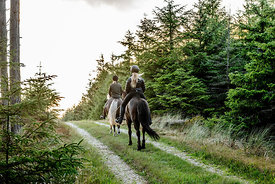 Danish women riding horses in Thy woods, Denmark 5