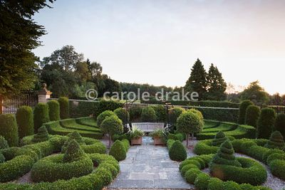 The Parterre at Bourton House, Moreton-in-Marsh in August at dawn
