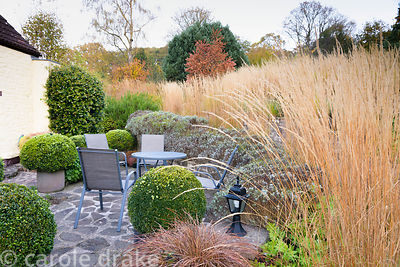 Seating area framed by clipped box and lavender at the bottom of a terraced garden with lines of Calamagrostis x acutiflora '...