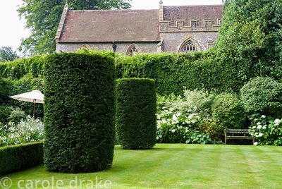 Yew columns line the lawn beside box parterre planted with Nicotiana alata, Salvia sclarea var turkestanica and Verbena bonar...