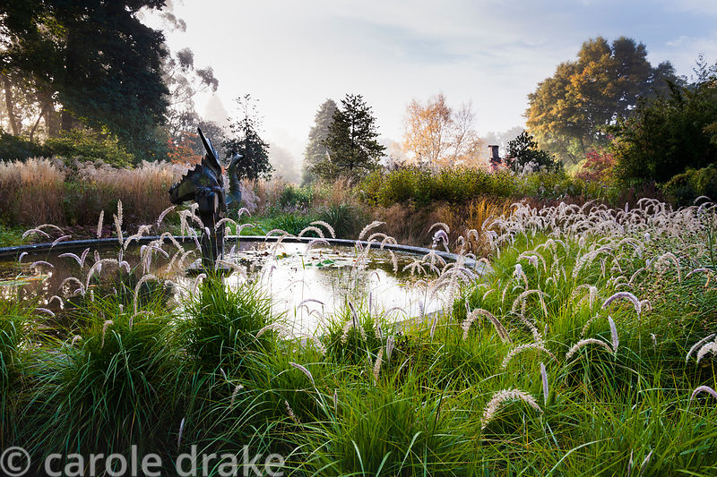 The Dragon Garden on a misty autumn morning at Knoll Gardens, with a central circular pond and masses of grasses and herbaceo...
