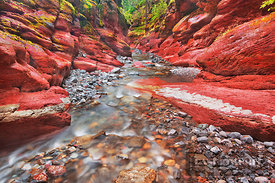 Mountain brook in Red Rock Canyon - North America, Canada, Alberta, Waterton Lakes National Park, Red Rock Canyon (Rocky Moun...