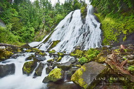 Waterfall Diamond Creek Falls - North America, USA, Oregon, Lane, Oakridge, Diamond Creek Falls (Cascade Range, Willamette Na...