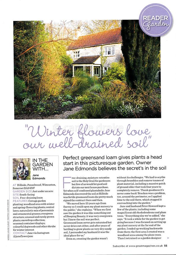 Jane Edmonds' garden in winter, Garden Answers, January 2021