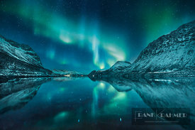 Polar light (Aurora Borealis) over Grotfjord - Europe, Norway, Troms, Kvaloya, Tromvik - Grotfjord (Lapland) - digital