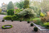 Newly replanted topiary garden at the front of the house with yew balls framed by mixed borders including Clerodendrum tricho...