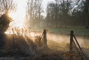 Early morning sun illuminates mist rising from the River Lambourn in Welford Park, Welford, Newbury, Berkshire, UK