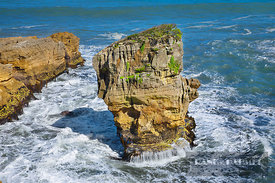 Rocky coast at Pancake Rocks - Oceania, New Zealand, South Island, West Coast, Buller, West Coast, Paparoa National Park, Pun...
