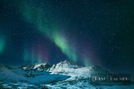 Polar light (Aurora Borealis) over snowcovered mountains on Kvaloya - Europe, Norway, Troms, Kvaloya, Norsfjordbotn, east of ...