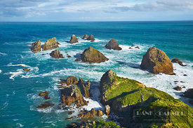 Rocky coast am Nugget Point - Oceania, New Zealand, South Island, Otago, Clutha, Catlins, Nugget Point (Polynesia) - digital