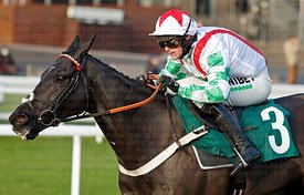 13.50	The Fitzdares Club Loves The Peterborough Chase (Class 1) Grade 2