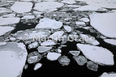 Sea ice at approximately Latitude S63°53', Longitude W56°20', Weddell Sea, Antarctic Peninsula,  Antarctica