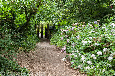 Gate leads out of the garden to a path that links up with the South West Coast Path, and leads to views of Pudcombe Cove. Col...