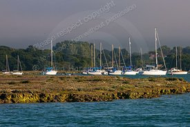 Newtown Creek, Isle of Wight