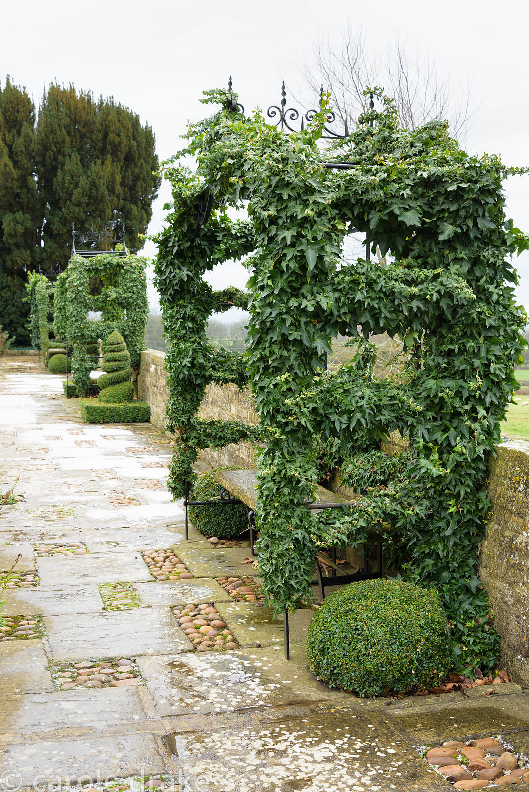 Ivy coated arbours at Bourton House garden in the Cotswolds in January