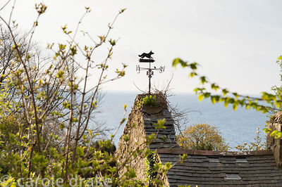 Fox weathervane on the roof of ruined cottage in the grounds of the house, with sea of Cardigan Bay beyond. Plas yn Rhiw, Rhi...