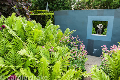 Ammonite sculpture by Darren Yeadon framed by a window in a grey wall on one side of the flower garden, with lush ferns and p...